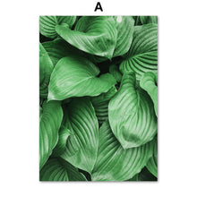 Load image into Gallery viewer, Green Hosta Plantaginea Banana Leaf Wall Art Canvas Painting Nordic Posters And Prints Wall Pictures For Living Room Home Decor - SallyHomey Life's Beautiful