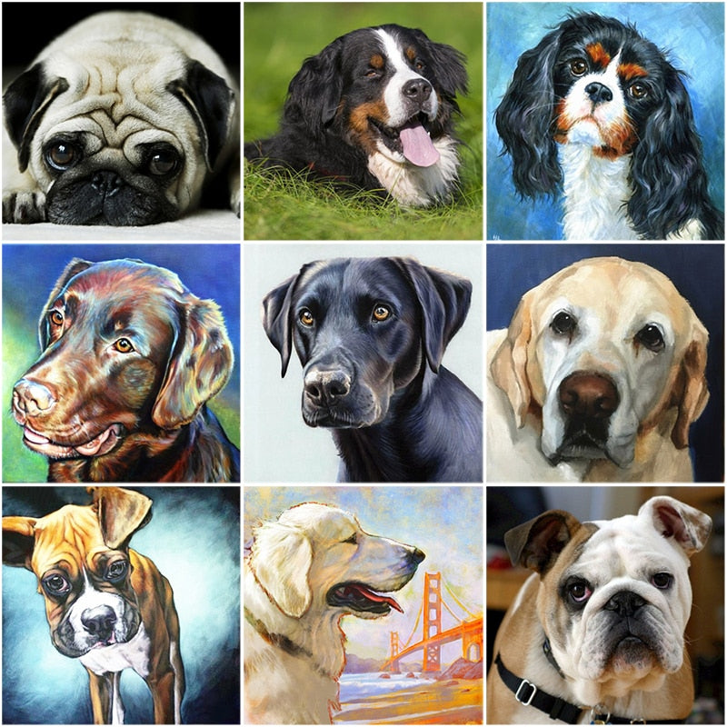DIY 5D Diamond Painting Dog Labrador Animal Diamond Embroidery Cross Stitch Kit Full Round Mosaic Pictures Rhinestone Home Decor