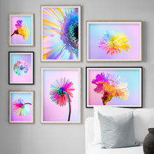 Load image into Gallery viewer, Chrysanthemum Carnation Colorful Flower Wall Art Canvas Painting Nordic Posters And Prints Wall Pictures For Living Room Decor - SallyHomey Life's Beautiful