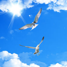 Load image into Gallery viewer, Blue Sky - SallyHomey Life's Beautiful