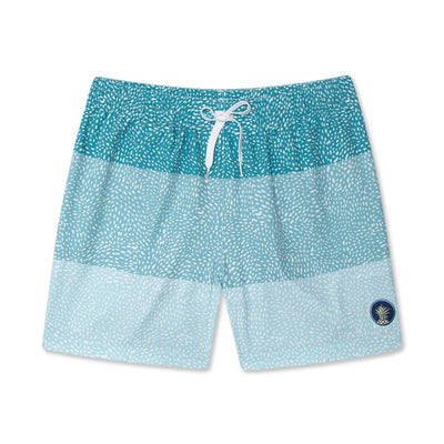 d8bd53b30 Mens Swim Trunks | Swim Trunks for Men | Chubbies Swimming Trunks
