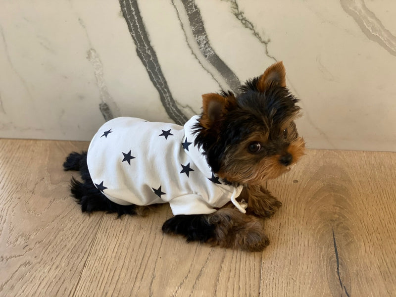STAR PRINT DOG HOODIE - IVORY AND BLACK - RETAIL STORE