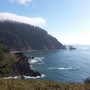 Pacific Ocean on the Oregon Coast from Harts Cove trail near Neskowin Oregon