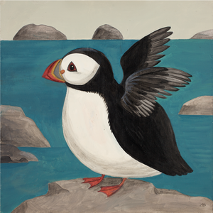 Fluffing Puffin Catriona Hall print