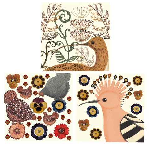 Curlew, Hen & Hoopoe Card Set