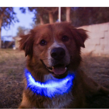 SKY BLUE | LED Cat Collar