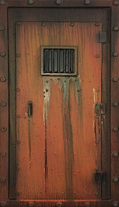 Prison Cell Door IN203