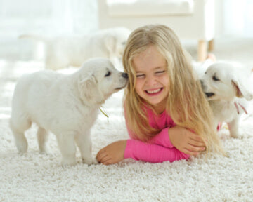 8 ways to prep for your new puppy