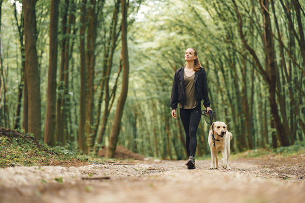 go for an adventure with your dog