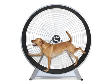 GoPet CG6020 Treadwheel for Medium -Large Dogs, up to 150lbs