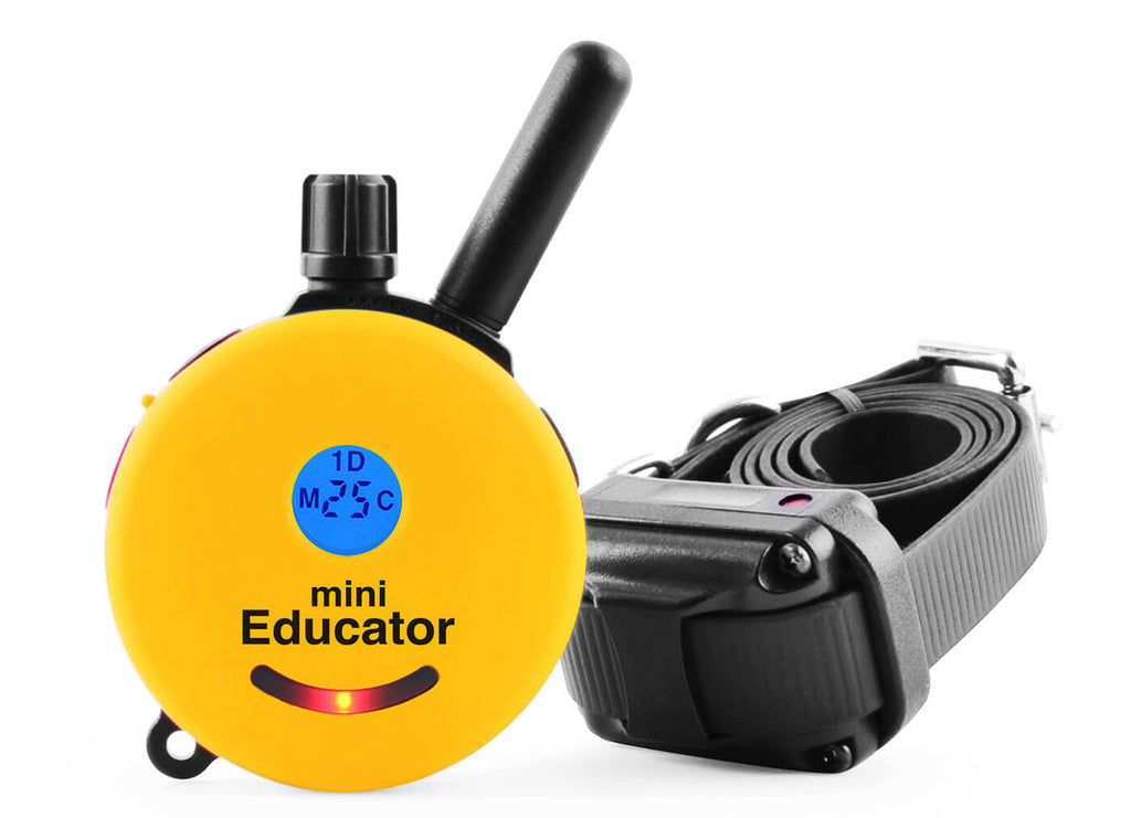 e-Collar ET-300 MINI Educator 1/2 mile remote dog collar in yellow