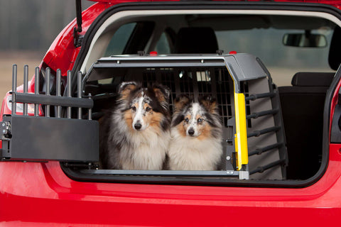 MIM Safe Variocage Compact Extra Large (XL) 00368 car crash test crate for hatchbacks with two dogs