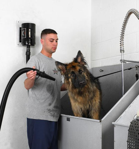 MetroVac Air Force Blaster Professional Dog Grooming Dryer wall Mount