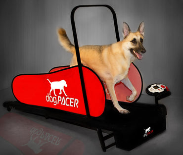 DOGPACER LF 3.1 FOLDING FITNESS DOG TREADMILL FOR DOGS UP TO 179 LBS