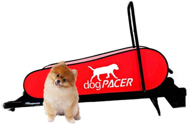 dogPACER MiniPacer Folding Dog Fitness Treadmill for Dogs Up To 55lbs