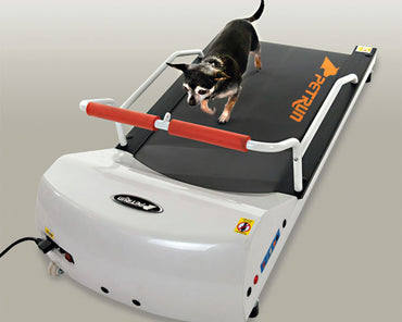 GoPet PetRun RP700 Treadmill for Small Dogs and Toy Dogs