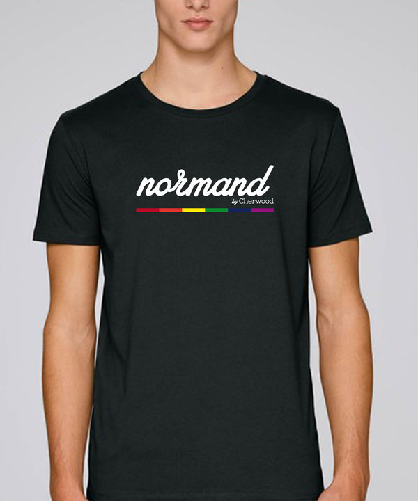 "T-shirt Homme ""Normand Rainbow"""
