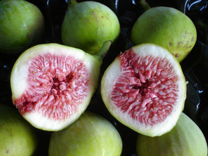 Fresh Fig Orders - Thanks Folks - Back after Easter
