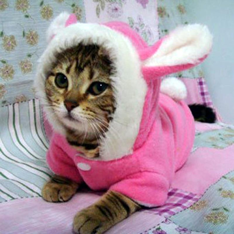 Pet Cat Clothes Mascotas Costume Clothes For Pet Hoodies Cute Rabbit Cat Clothing Puppy Fleece Warm Pet Cat Jacket Outfit 35 A1