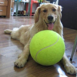 "Massive Fantasy Dog Tennis Ball (9.5"" Diameter)"