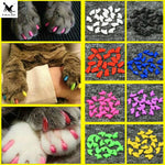 20pcs Soft Pet Nail Covers Cat Nail Caps Pet Claw Paws Cover Caps with Free Glue and Applicator Protection Pet Accessories