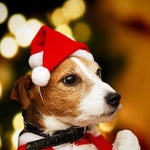 Christmas Halloween Winter Pet Dog Cat Cap Funny Non-woven Fabric Pet Costume Puppy Dog Caps Christmas Party Pets Accessories 12