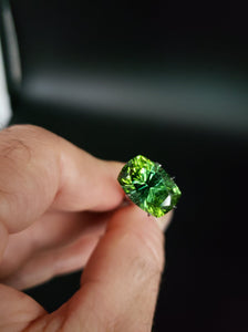 Green Tourmaline 8.44ct Cut by Mark Gronlund!