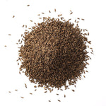 Caraway Seed, Whole - Spice Source
