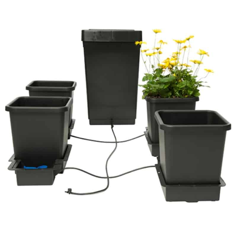 Auto Pot 4 pot complete watering system