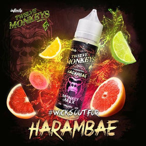 Twelve Monkeys - Harambae 50 ml Shortfill