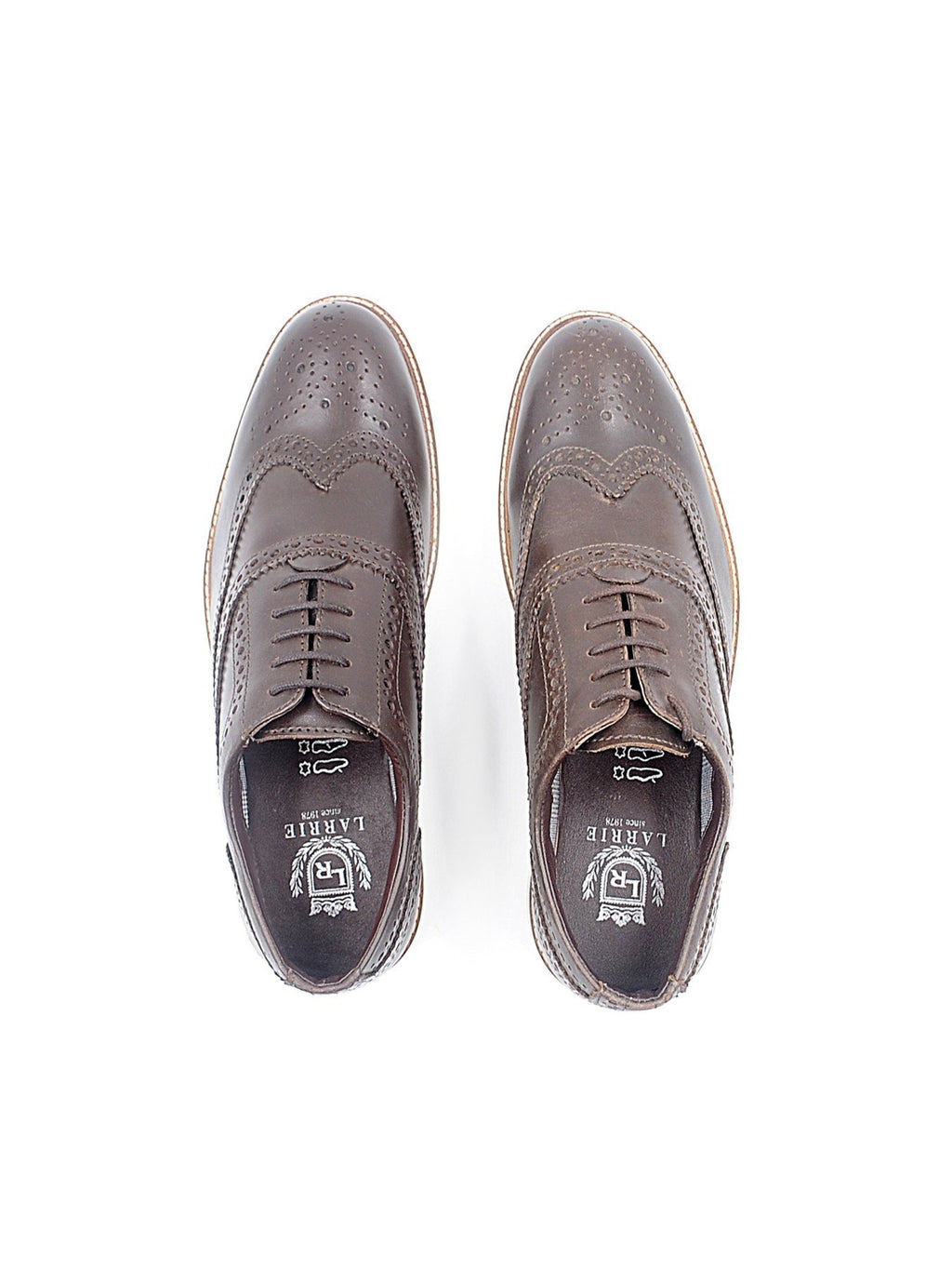 LR LARRIE Coffee Basic Lace Up Shoes