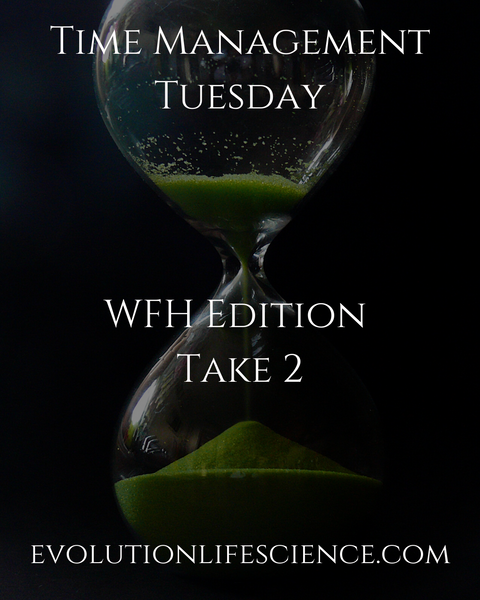 Time Management Tuesday - WTH Edition Take 2