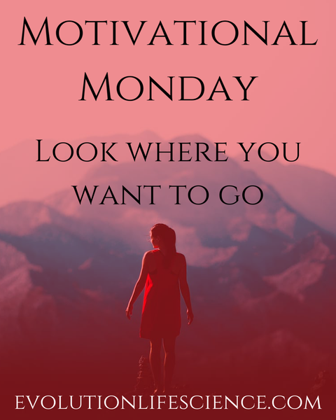 Manic Monday - Look Where You Want To Go