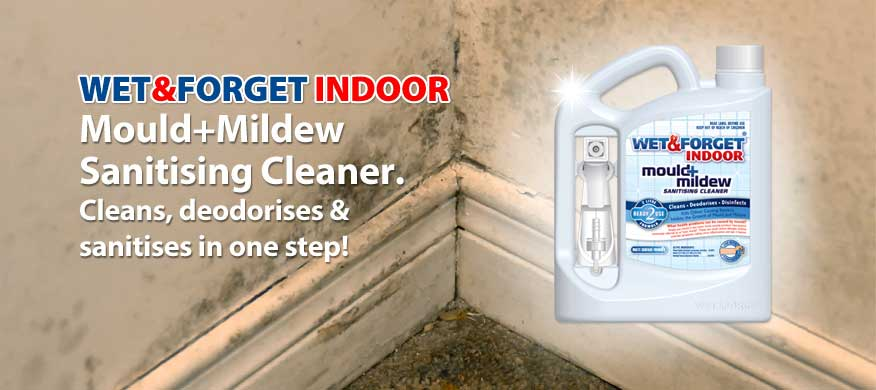 Indoor Mould Remover