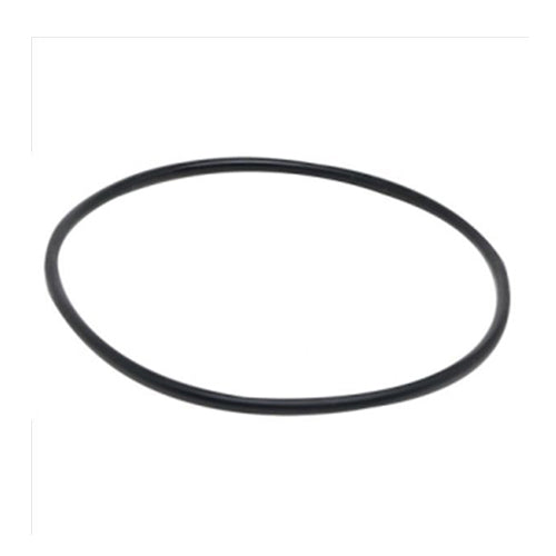 Spa Quip / Ecopure / Enduro O ring for 2000 filter lid - M9755