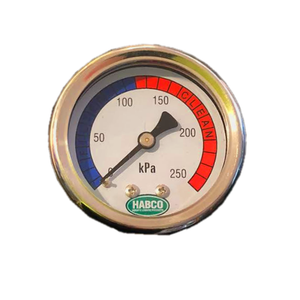Pressure Gauge S/Steel Back Mount 50mm
