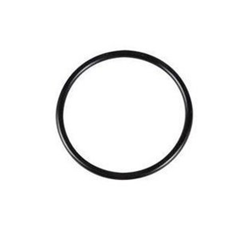 Zodiac O ring for FloPro pump lid - WS0137200