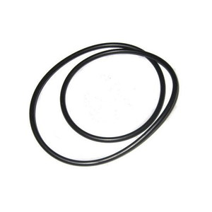 Onga O ring for pump body LTP, Pantera, 400/600/900 series - Genuine O-Ring