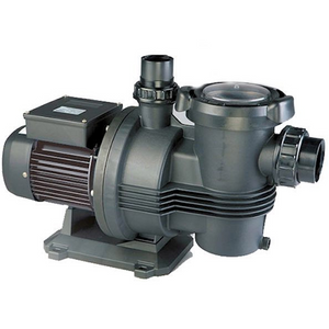 Davey Typhoon (formally Cyclone / Silent) C100M Pool Pump