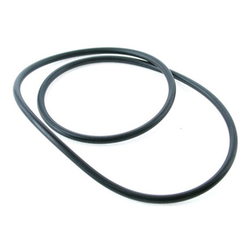 Davey O ring for EC cartridge filter lid - Q2231