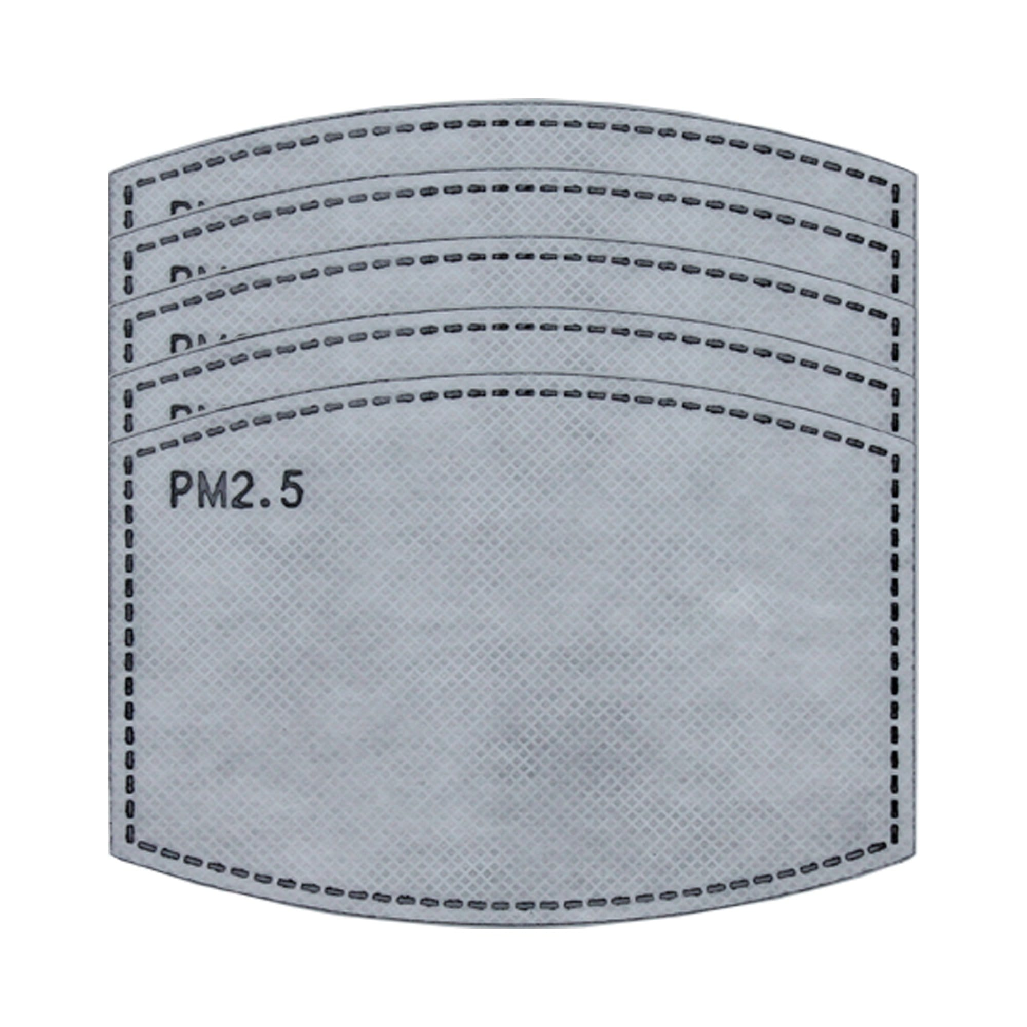 PM2.5 Filter, Individually Wrapped, Pack of 5 - Ready First Aid