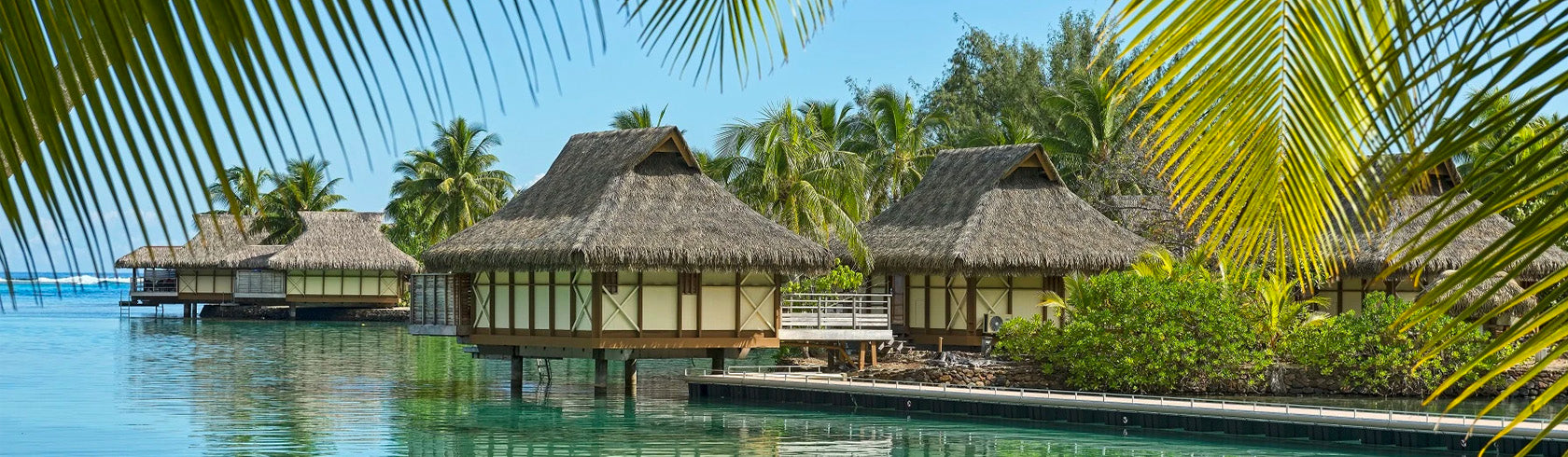 Moorea Collection