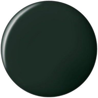 Bluesky Professional BLACKISH GREEN swatch, product code DC073