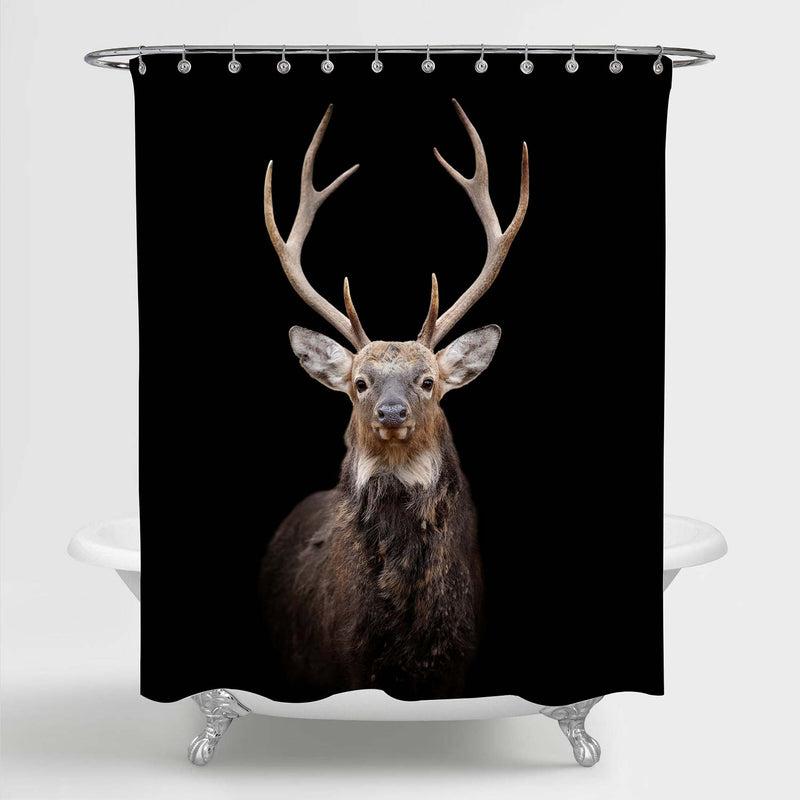 Portrait Red Deer Bathtub Shower Curtain on Dark Background, Wild Mature Reindeer in Winter for Rustic Home Decor, Water Resistant Fabric Bathroom Accessories, Black Brown, 72 x 72 Standard