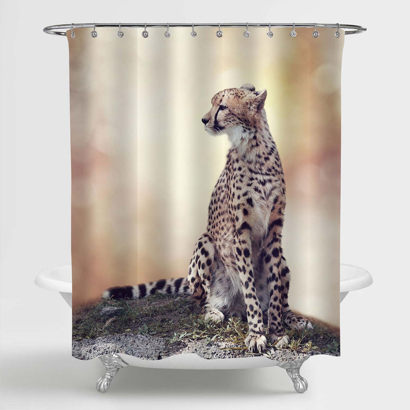 Cheetah Sitting on a Hill and Looking Around Shower Curtain - Gold