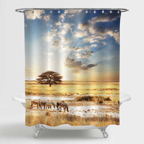 Zebra at Sunset Decorative Shower Curtain Set with Hooks, Africa Nature Landscape with Beautiful Sunset Light Bathroom Tub Decoration, Cloth, Gold Blue, 72 x 72 inches Standard