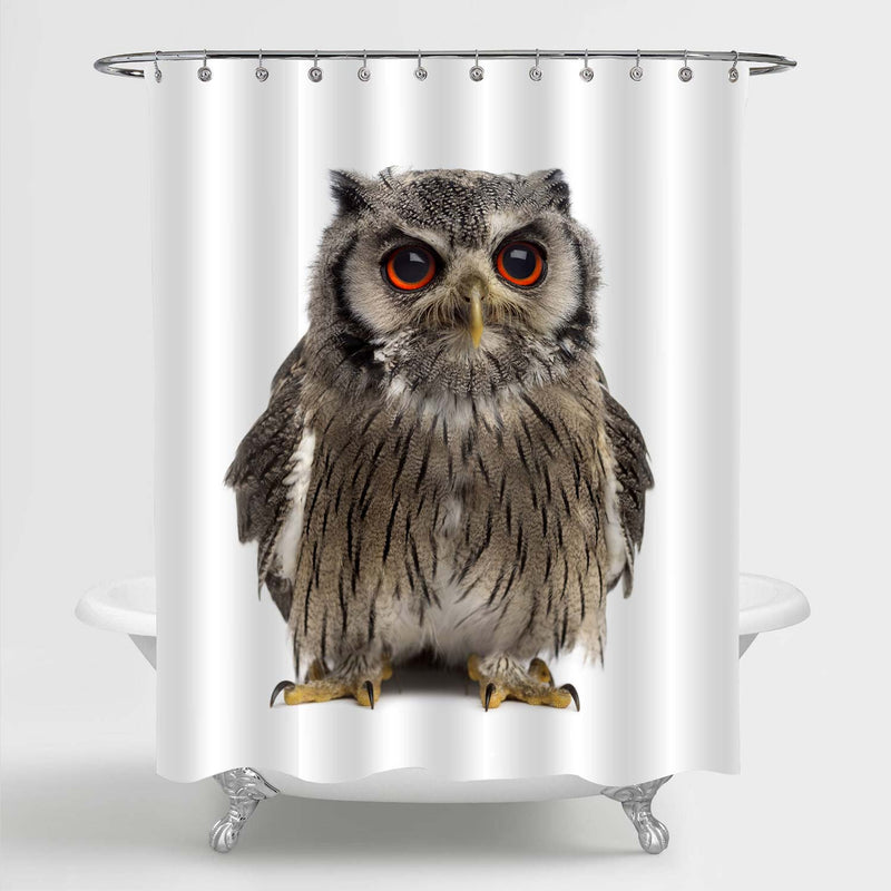 Northern White-faced Owl Shower Curtain - Grey