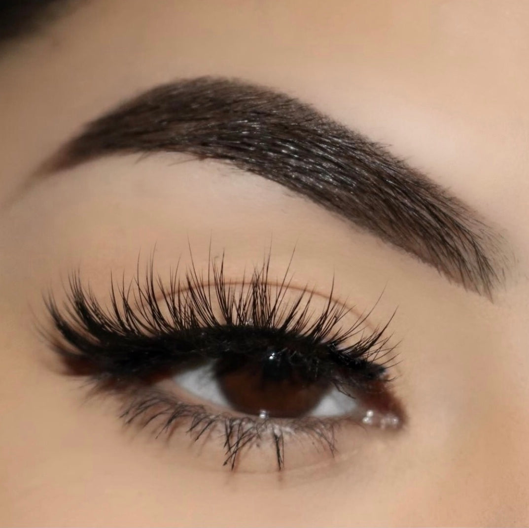 Regina Luxury 3D Faux Mink Lashes