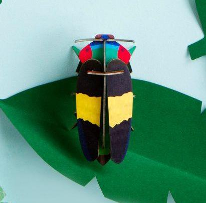 Jewel Beetle
