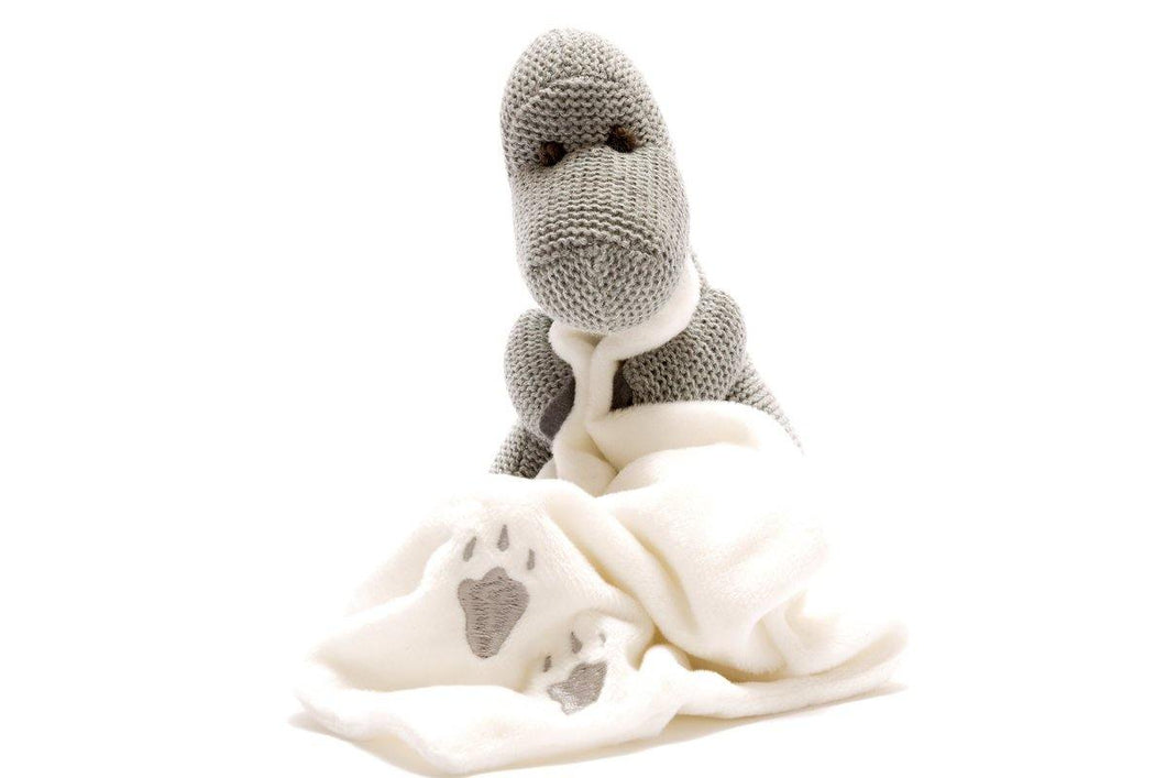 Knitted Grey Diplodocus with Blanket Comforter - The Norse Nook Ltd